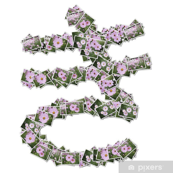 Naklejka Pixerstick Japoński znaków hiragana, wykonane z kwiatów zdjęcie. - Znaki i symbole