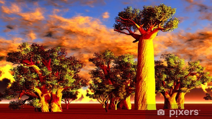 African baobabs Vinyl Wall Mural - Themes