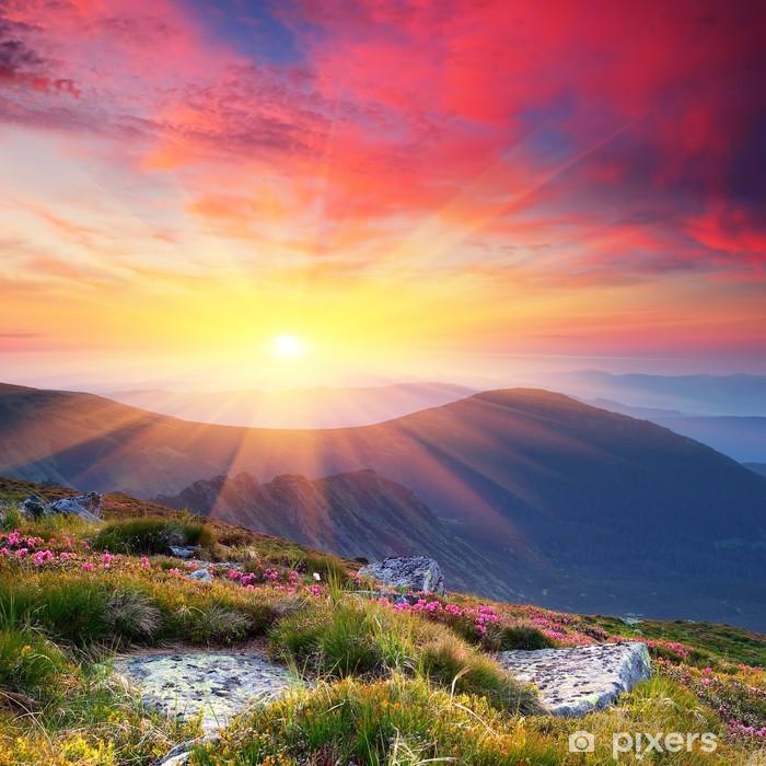 Fototapeta samoprzylepna Letni krajobraz w górach ze słońcem - Tematy