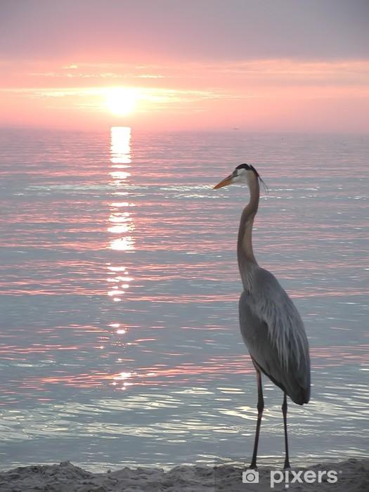 Fotomural Estándar Florida heron - Religión