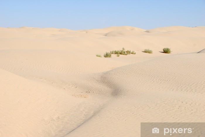 Vinylová fototapeta Sahara Occidental 32 - Vinylová fototapeta