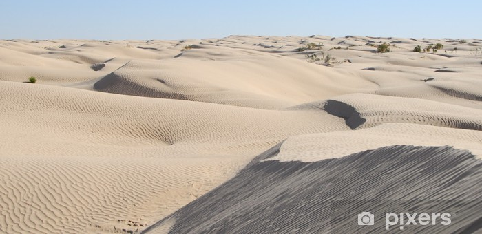 Papier peint vinyle SAHARA OCCIDENTAL 34 panoramique - Afrique