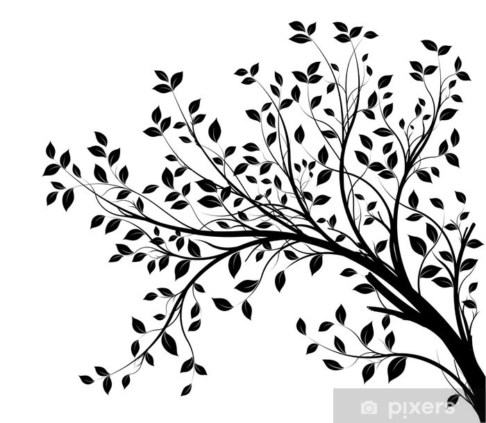 Tree Branches Silhouette Isolated White Background Vinyl Wall Mural
