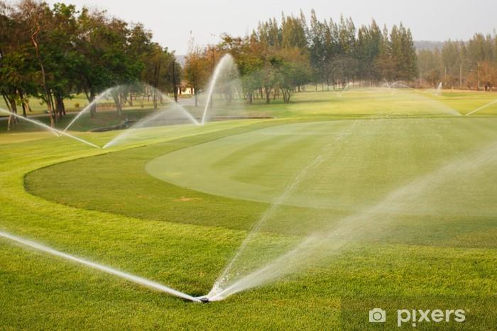 Fototapeta winylowa Podlewanie w golfowym - Sporty indywidualne