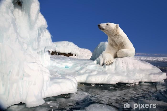 Sticker Pixerstick Ours polaire debout dans le bloc de glace - Thèmes