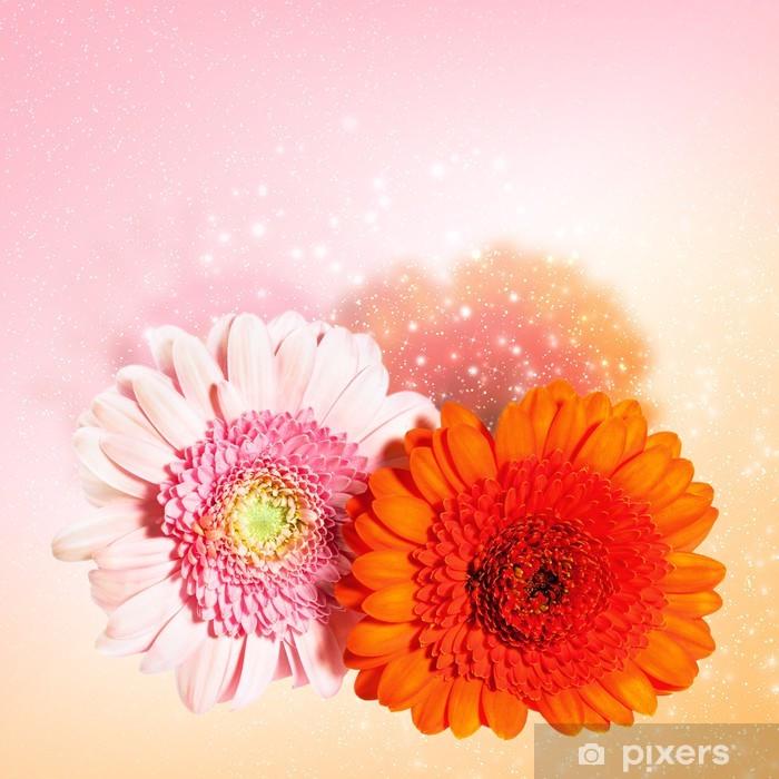 Papier peint vinyle Belle fleur gerbera - Fleurs