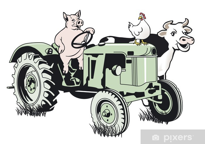 Schwein Auf Dem Traktor Wall Mural Pixers We Live To Change