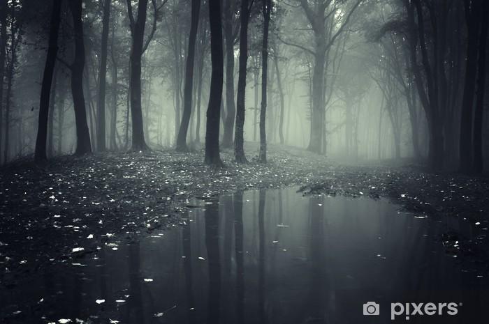 Vinilo Pixerstick Estanque en un bosque con niebla - Temas