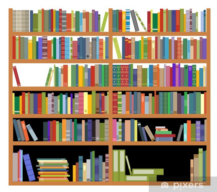 Bookshelf with books Vinyl Wall Mural - Education