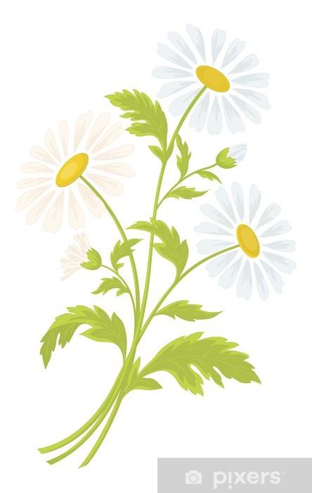 Naklejka Pixerstick Kwiaty rumianku - Kwiaty