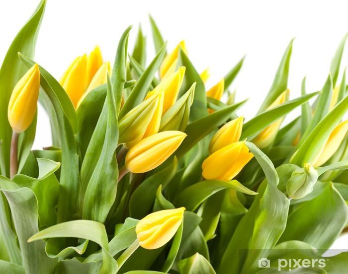 Nálepka Pixerstick Pěkné tulipány - Témata