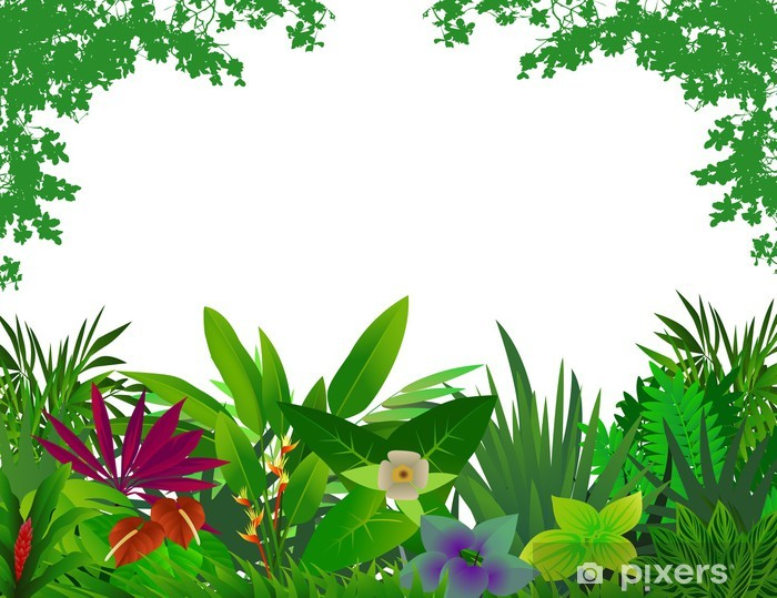 Beautiful Forest Background Wall Mural Pixers We Live To Change