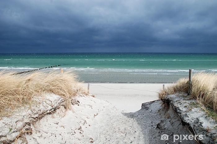 Papier peint vinyle Dunes passage de la mer Baltique - Eau