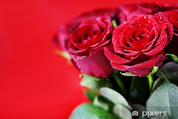 Naklejka Pixerstick Czerwone róże - Świętowanie