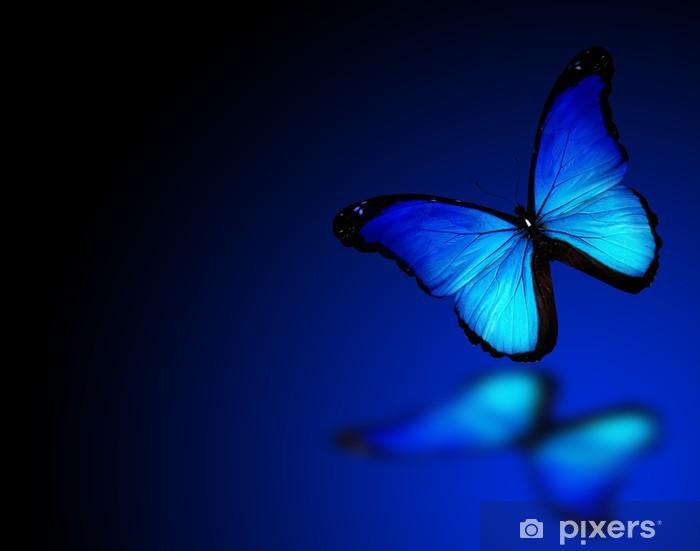 papier peint papillon morpho bleu sur fond bleu fonc pixers nous vivons pour changer. Black Bedroom Furniture Sets. Home Design Ideas