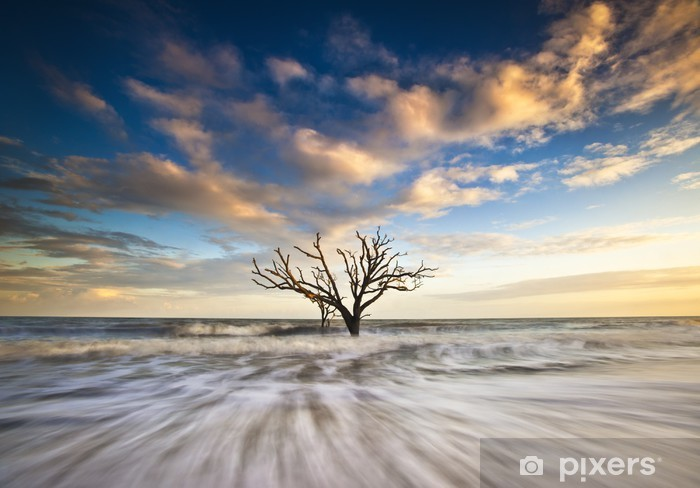 Sticker Pixerstick Charleston SC Ocean Oak Tree Edisto Island Beach en Caroline du Sud - Vacances