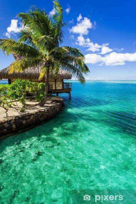 Fototapeta winylowa Tropikalne palmy willi i zielone laguny obok - Przeznaczenia