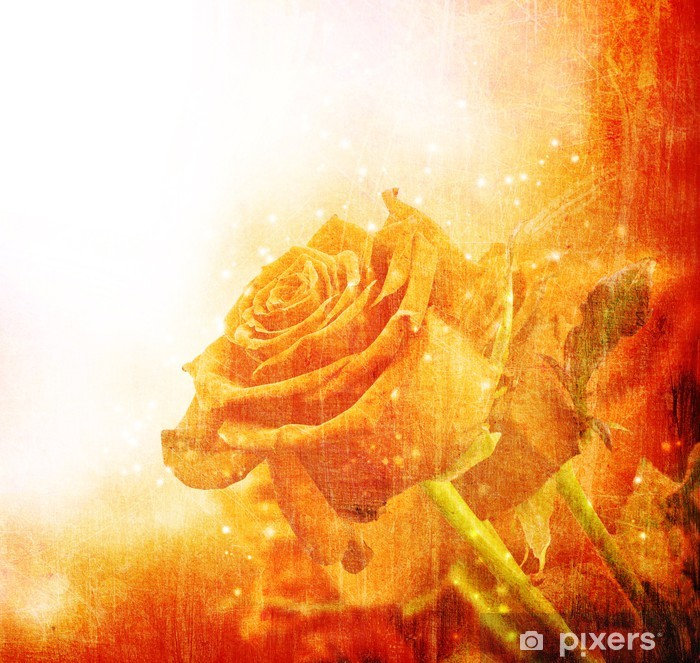 Plakat Tło z czerwonych róż - Tła