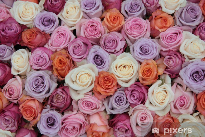 Nálepka Pixerstick Pastel růže svatební květiny - Témata