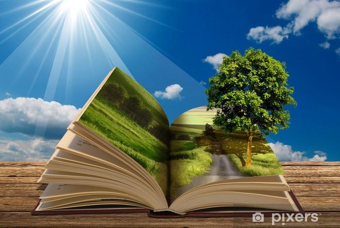 Papier peint vinyle Réservez avec arbre - Education