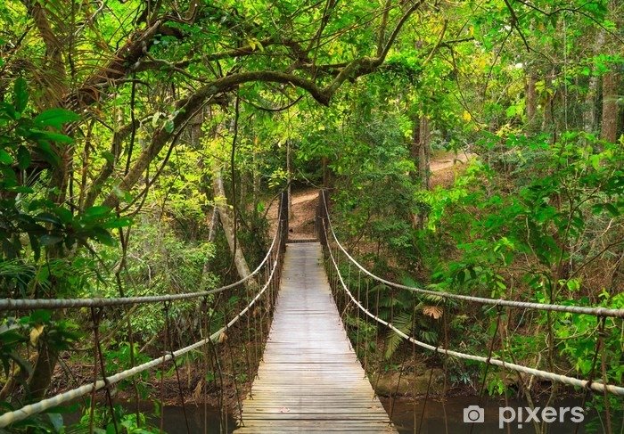 Bridge to the jungle, Thailand Pixerstick Sticker - Destinations