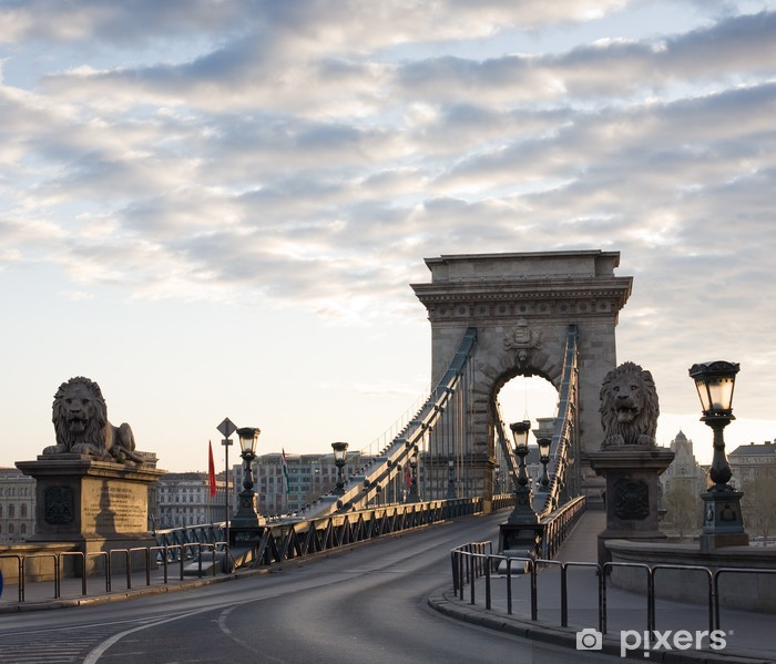 The Budapest Chain Bridge at dawn. Vinyl Wall Mural - Infrastructure