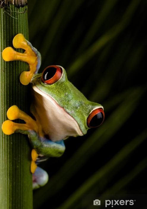 Vinilo para Nevera Crazy Frog! - Ranas