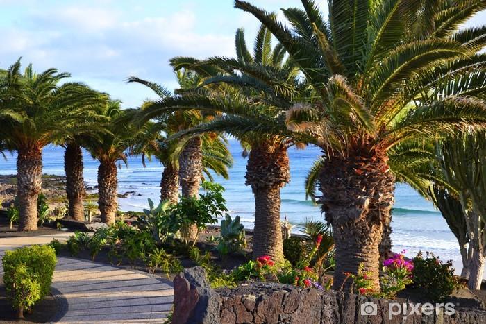 Fototapeta winylowa Lanzarote - Europa