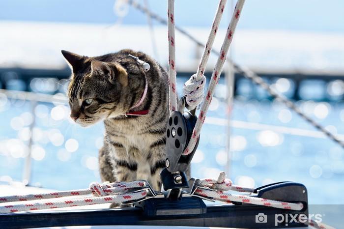 Papier peint vinyle Skipper chat avec voilier gréement - Bateaux
