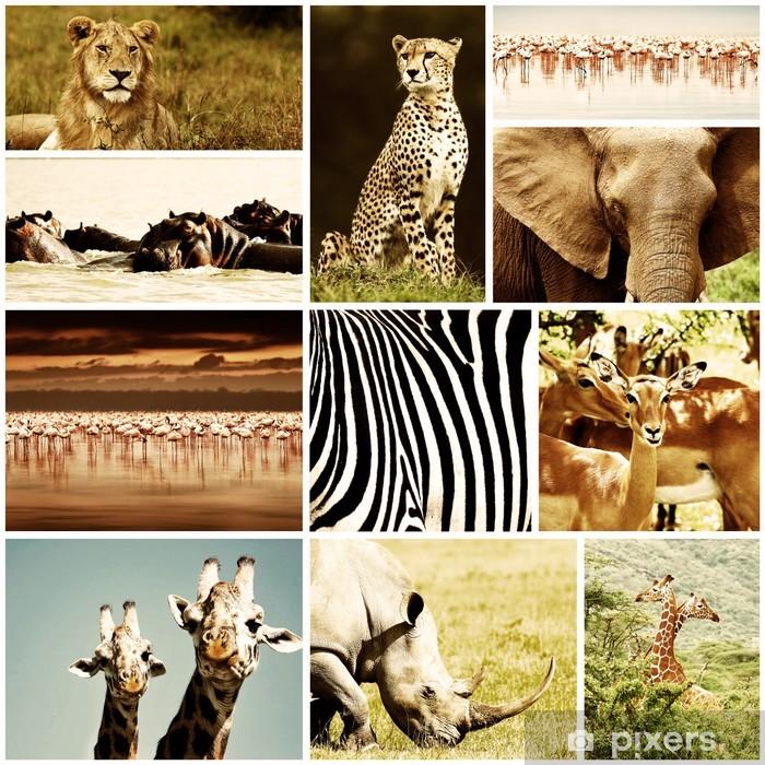 Papier peint vinyle Animaux de safari africain Collage - Mammifères