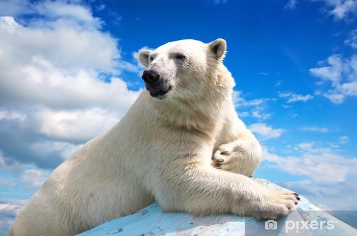 Sticker Pixerstick Ours polaire sur fond de ciel - Thèmes