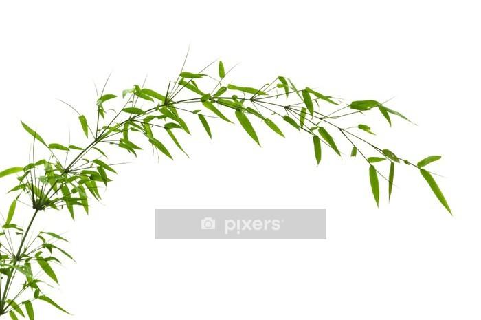 Sticker Mural Feuilles De Bambou   Plantes