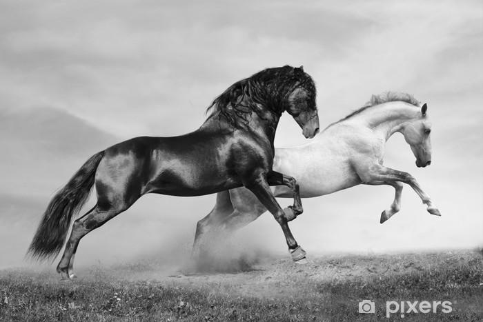 Pixerstick Sticker Paarden lopen -