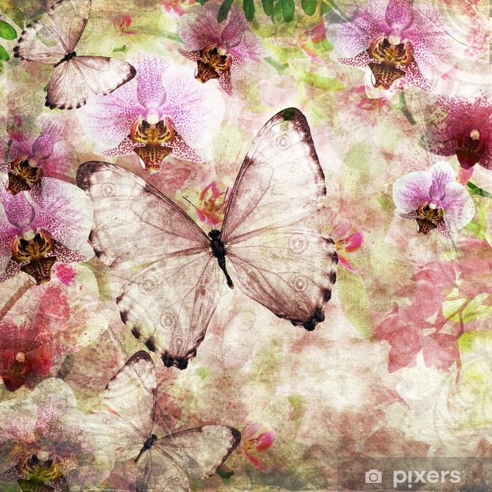 824006776 Butterflies and orchids flowers pink background ( 1 of set) Vinyl Wall  Mural - National