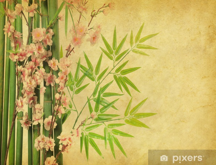 Vinylová fototapeta Bambus a květ švestky na staré antické papír textury - Vinylová fototapeta