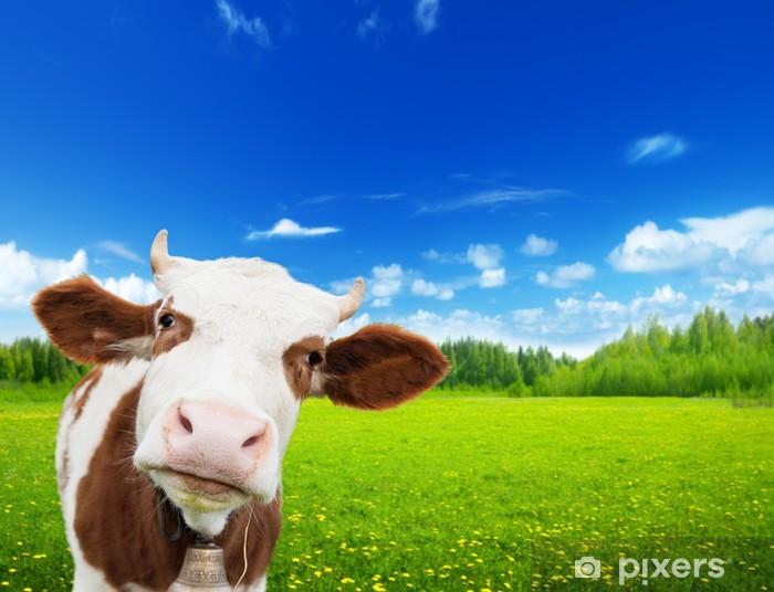 Pixerstick Aufkleber Kuh und Feld von frischem Gras -