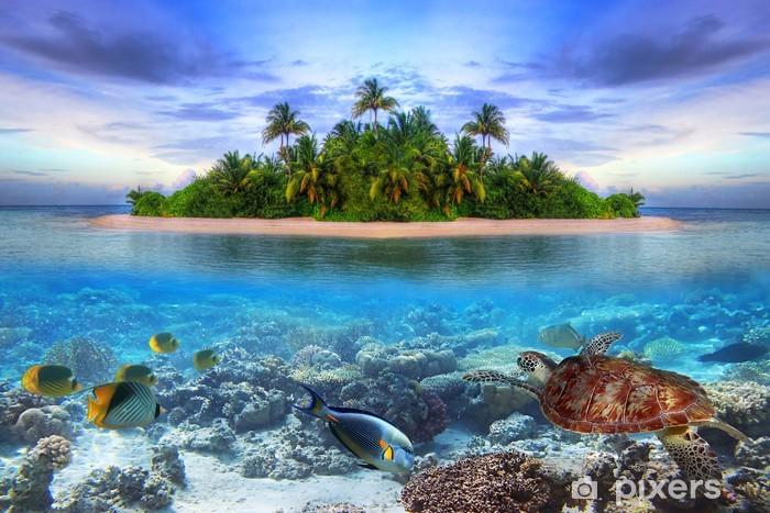 Papier peint vinyle La vie marine à l'île tropicale des Maldives -