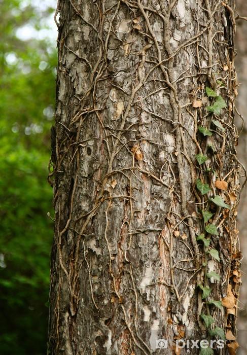 Sticker Pixerstick Tronc d'arbre - Europe