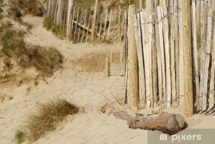 Naklejka Pixerstick Dune Sand Beach, Cornwall, UK. - Europa