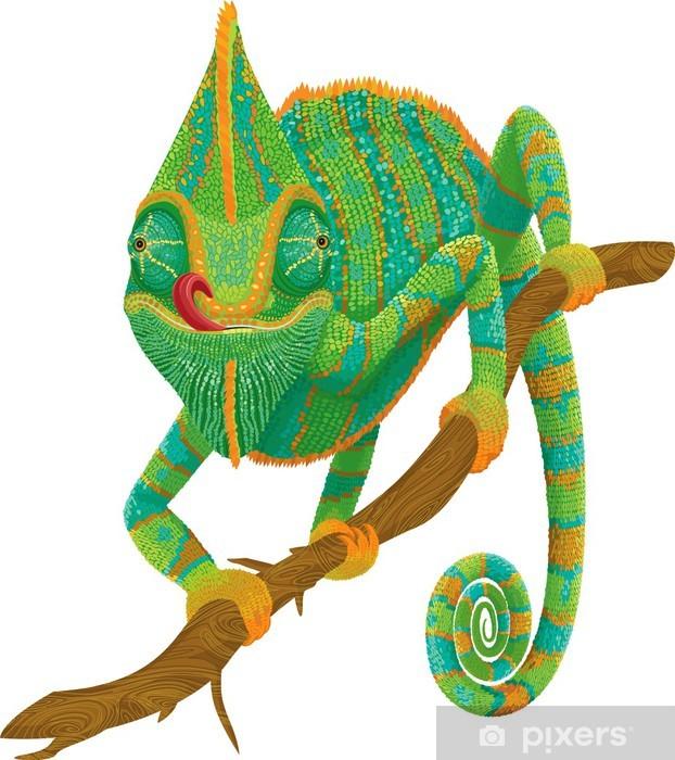 Papier peint vinyle Chameleon escalade sur une branche isolée sur fond blanc - Autres Autres