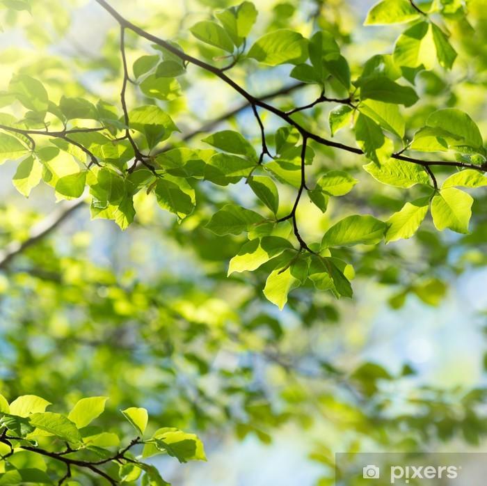 Pixerstick Sticker Groene bladeren - Thema's