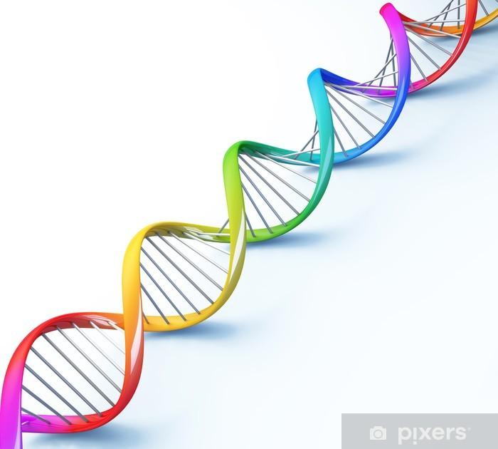 Papier peint vinyle Helix DNA strand génétiques couleurs des cellules de la recherche médicale - Signes et symboles