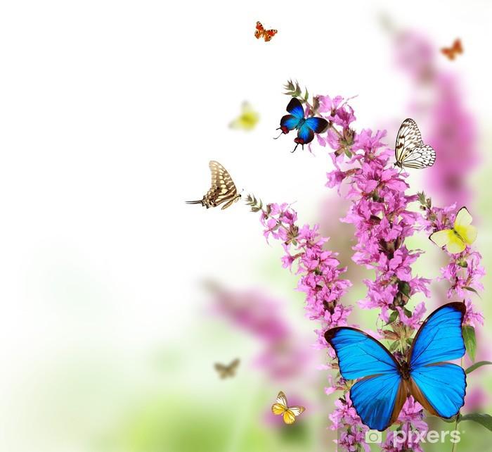 Sticker Pixerstick Belle fleur fond avec les papillons exotiques - Thèmes