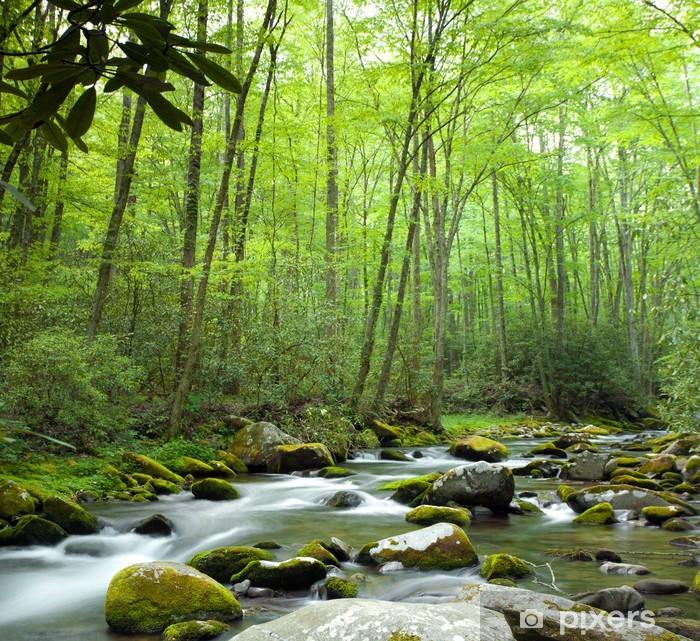 Fotomural Estándar Jungle corriente - Temas