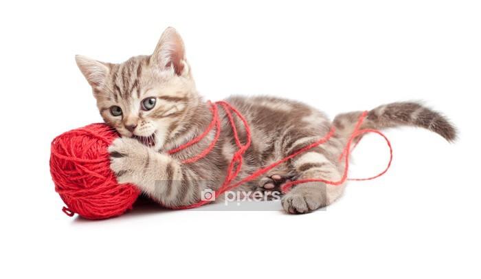 Muursticker Tabby katje spelen rode clew of bal - Zoogdieren