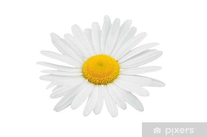 Sticker Pixerstick Fleur blanche - Textures