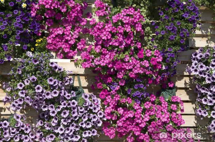 Papier peint vinyle Petunie; Surfina - Fleurs
