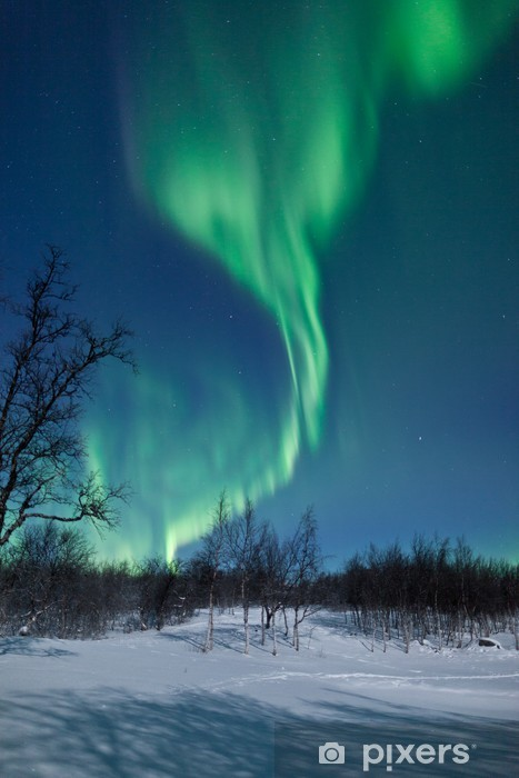 Papier peint vinyle Aurora Borealis en Suède - Thèmes