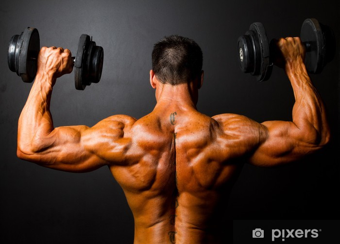 rear view of bodybuilder training with dumbbells Pixerstick Sticker - Health