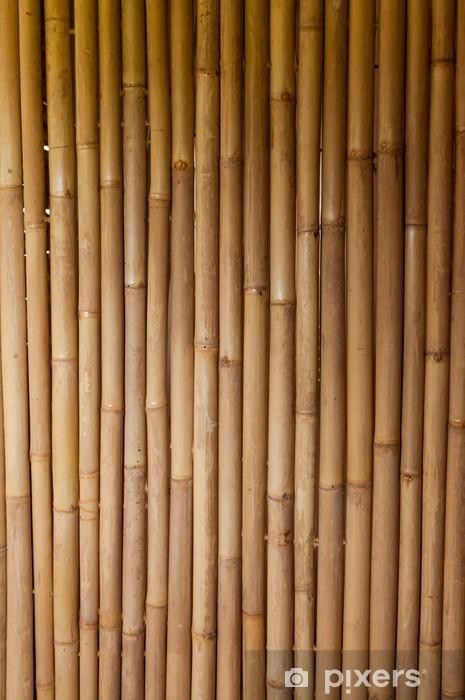 Fototapeta winylowa Bambus -